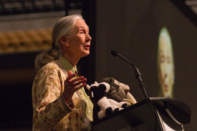 Jane_Goodall_at_Mizzou_Arena_(facing_right)